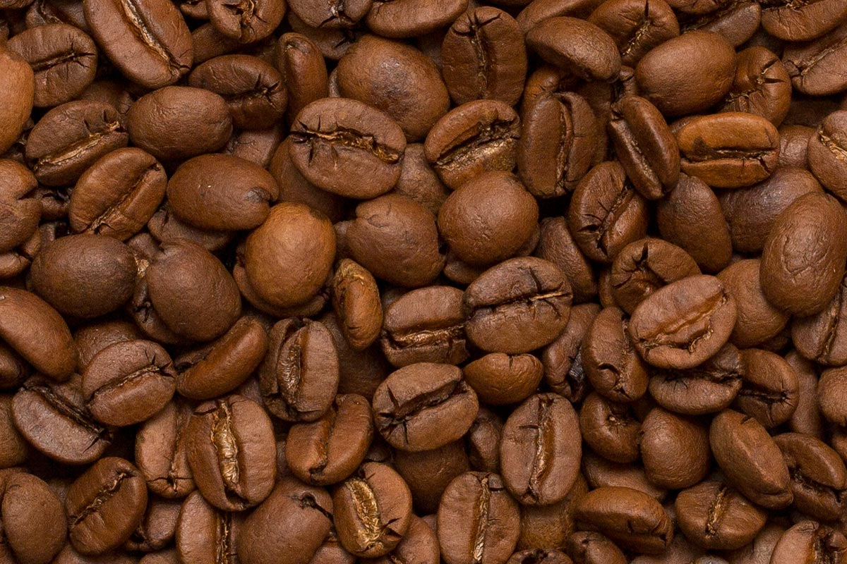Difference between coffee arabica and robusta